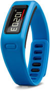 Garmin Vivofit Blue Bundle