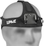 Lupine D151